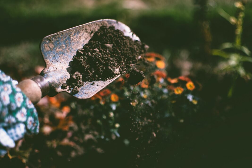 Jak wybrać najlepszą glebogryzarkę ogrodową?
